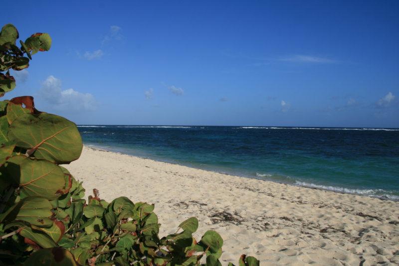 La plage du Cap Macré